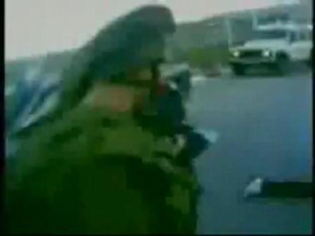 Terrorism Zionist,الارهاب الصهيوني,טרור הציוני