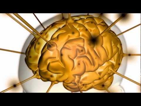 Abnehmen Hypnose, Übergewicht und das Gehirn
