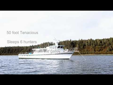 Alaska Hunting Ducks, Deer, Mountain Goat, Prince William Sound by boat