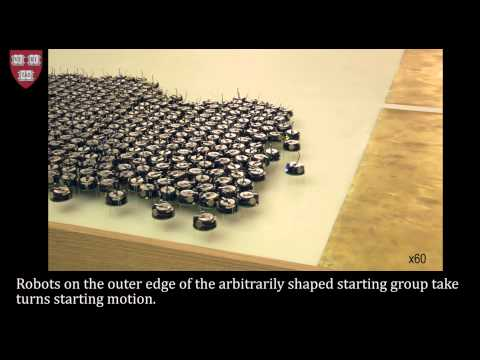 Programmable self-assembly in a thousand-robot swarm