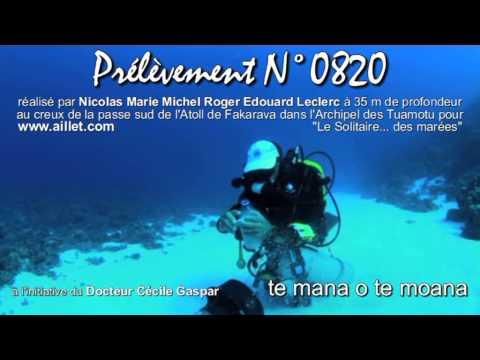 Prélèvement du sable N°0820 effectué par 35 m de profondeur