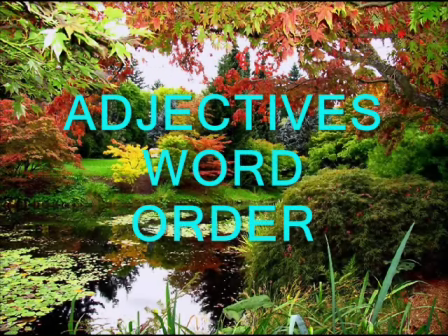 Adjectives . Word Order