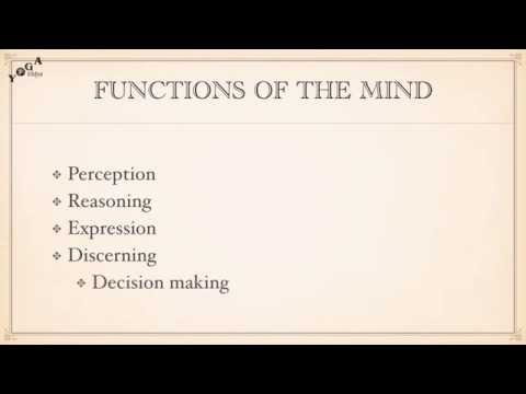 Functions of the Mind