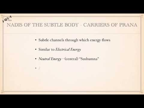 Life Force and Energy Channels - Prana: Nadis: