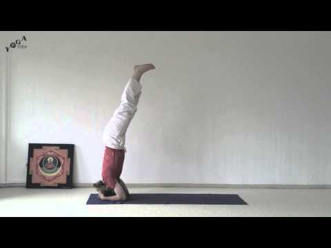 Head Stand in Lotus