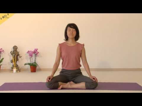 Meditation - On the Breath  - Thuy