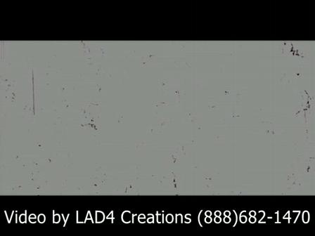Illinois Wedding Videos by LAD4 Creations(888)682-1470  Milica & Nikolas Wedding Highlights