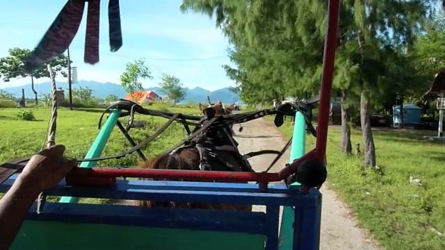 Bali Ramblings:Gili Trawangan