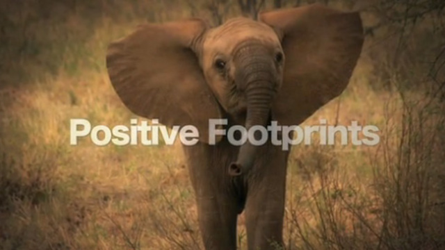 Positive Footprints - Kenya