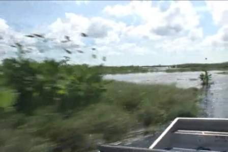 AirBoat Rides At MIDWAY!