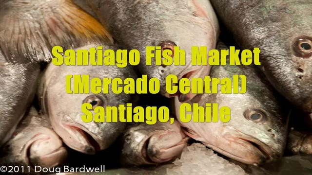 Santiago Fish Market (Mercado Central)