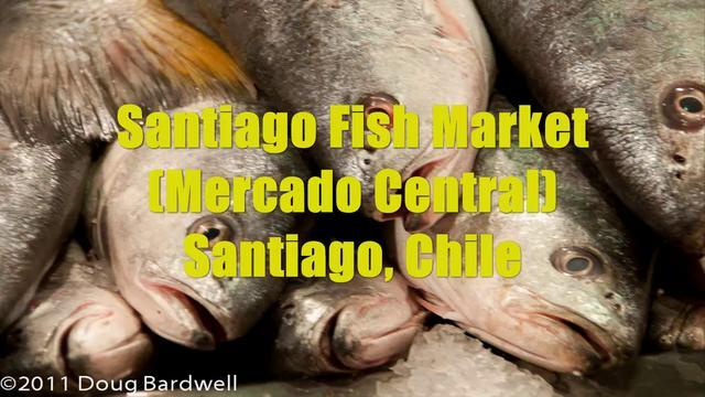 Santiago Fish Market (Mercado Central)