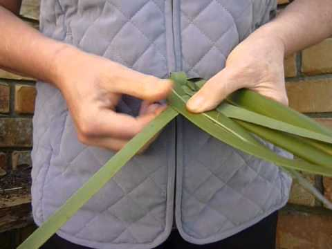 weaving putiputi