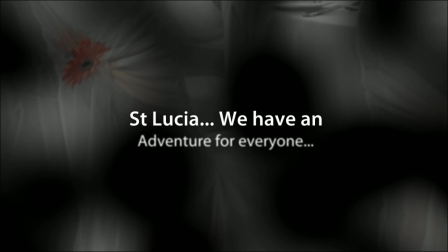 St Lucia Honeymoon  | Vacation Rental St Lucia