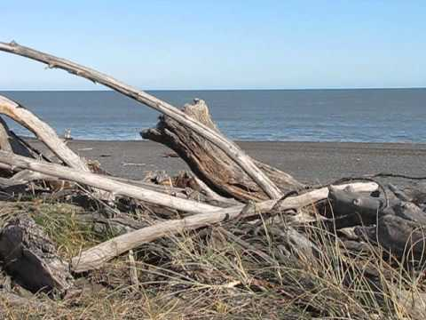 New Zealand Beach Palliser Bay View to South Island