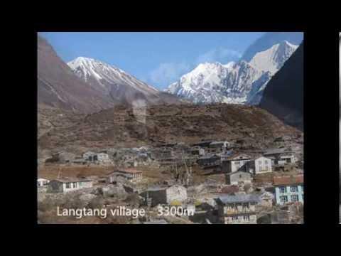 langtang valley trekking / Langtang Region Trekking in Nepal
