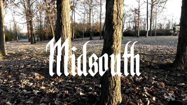 MIDSOUTH ft. LAYLA-WHY