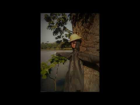 Pequeño estudio para banjo 3 (German Patarroyo)