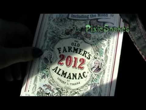 Most Important Magickal Pagan Book Ever