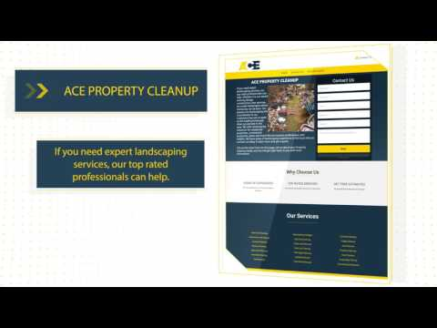 Professional Property Cleanup