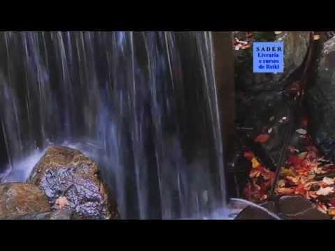 Video Momento Atemporal - texto e voz de  Moacir Sader