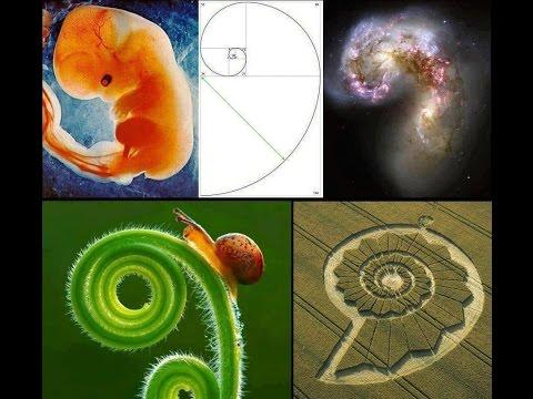 Introdução - Frequências Fibonacci e Frequências de Cura 7 Chakras