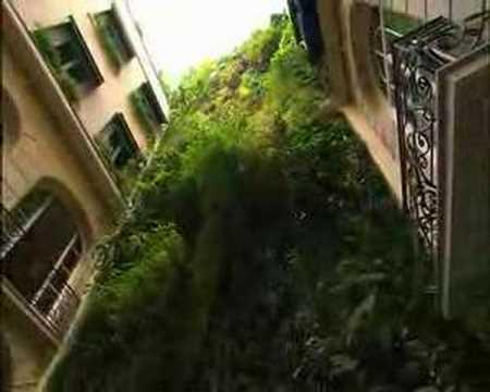 Patrick Blanc, Vertical Garden interview in Paris