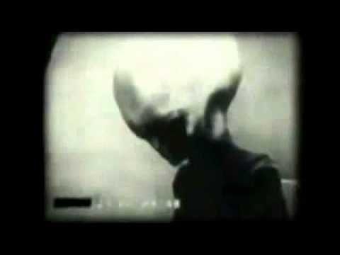 Wikileaks Video of Real Grey Alien Roswell Interviews