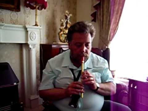 The Harlequin (ish) Tin Whistle