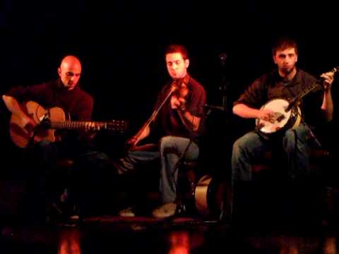 Jigs - Trad Trio in Dolan's, Limerick, Ireland