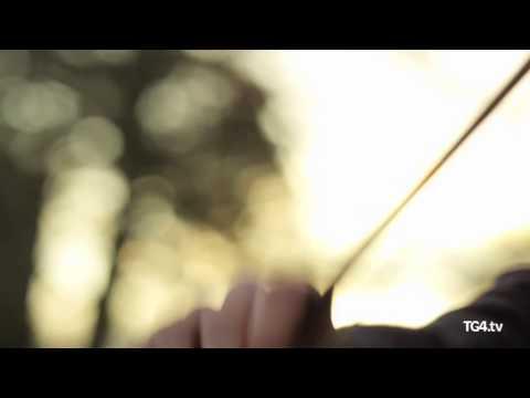Dónal McCague | Ceoltóir Óg na Bliana | TG4 Music Awards 2013