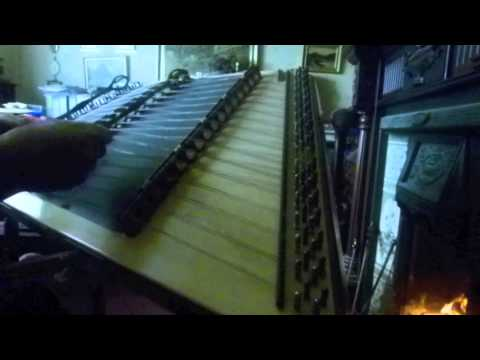 Andy Renwick's Ferret on Hammered Dulcimer!
