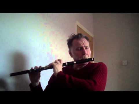 Michael Walsh - Irish Flute - Celeste's Jig