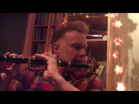 Irish Jig played on flute by Michael Walsh 'Out in the Ocean' January 2017