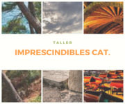 TALLER VIRTUAL:IMPRESCINDIBLES CAT.