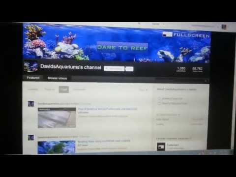 Jcorns33ia 100 Subscriber Contest Entry ; AquariaGems Talking About DavidsAquariums