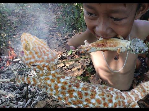 Primitive Technology - Find Food Gecko  Lizard  In forest - Amazing Kid  Catching Gecko wilderness