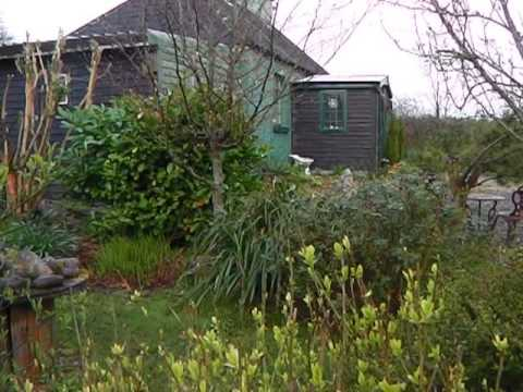 Happy Bealtaine from Bealtaine Cottage, Ireland