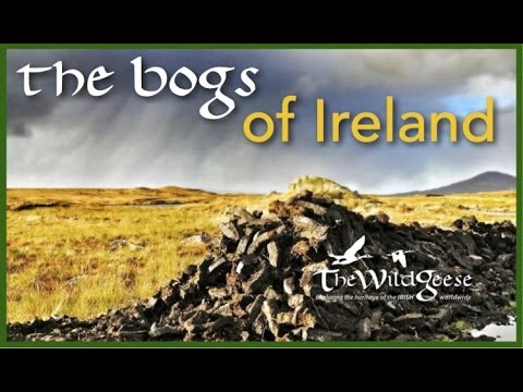 Unlocking the Mysteries of Ireland's Bogs With Dr. Ned Kelly