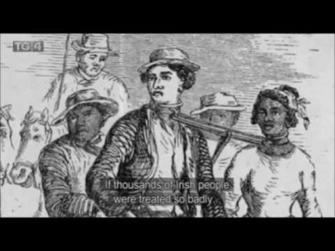 Irish Sugar Slaves of Barbados