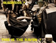 THIS IS THE RAVEN