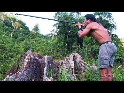 Borneo Death Blow - full documentary