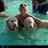 Lauren, Scooby and Bella