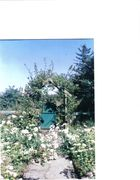 Front yard at Brockagh, County Sligo