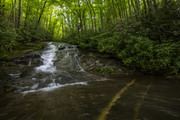 Forney Creek Cascades