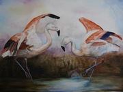 The Flamingos' Flamenco