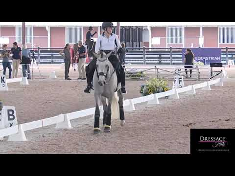 Robert Dover: 4 Things You Should Own In Riding Dressage