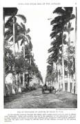 NGM 1920-07 Pic 01