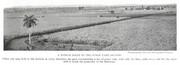 NGM 1920-07 Pic 03