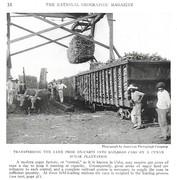 NGM 1920-07 Pic 06